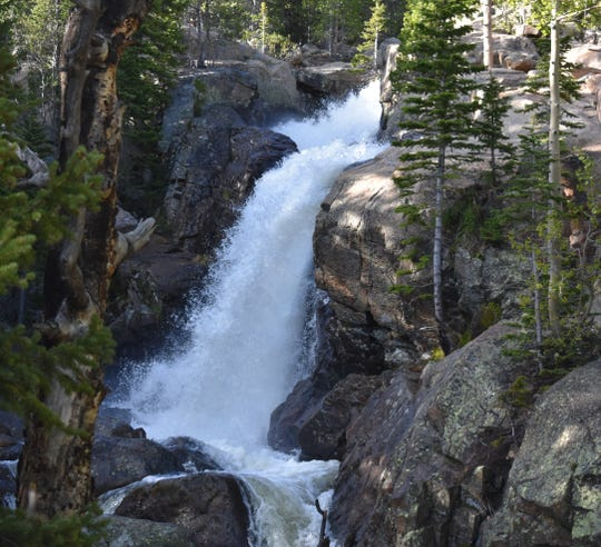Alberta Falls in the Glacier Gorge area of Rocky Mountain National Park gushes at first light Tuesday with a force not see in years.