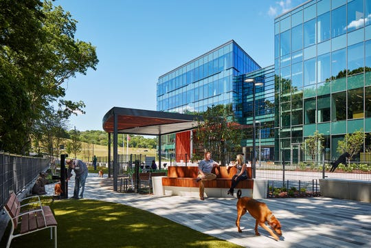 A new dog park is featured as part of the office space.