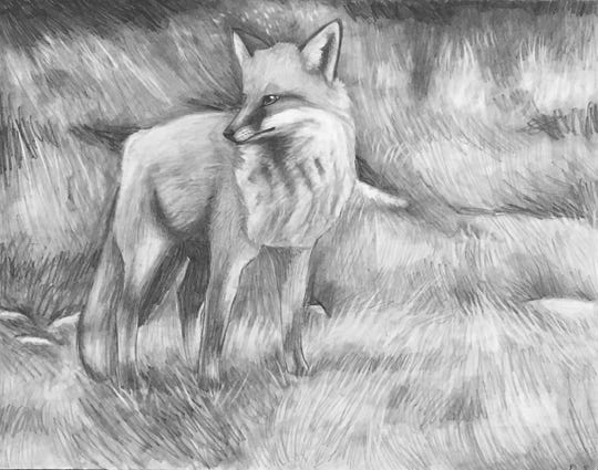 Drawing of a fox by Red Hook High School sophomore Emma Staubi is part of the exhibit at Taste Budd's Cafe in Red Hook.
