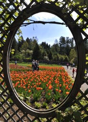 The Biltmore Estate's annual Festival of Flowers always draws thousands of people to the estate.