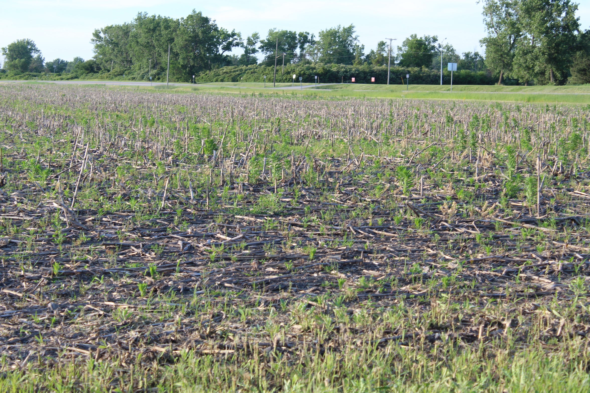 A combination of heavy rains, record high water levels on Lake Erie, flooding and extreme cold during this winter has resulted in a disaster for Ottawa County farmers in 2019. The county's board of commissioners wrote a letter to U.S. Department of Agriculture Secretary Sonny Perdue detailing the damage to the county's crops.