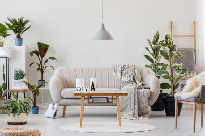 These expert tips can help you breathe new life into your living room, kitchen, bedroom — even your powder room — without breaking the bank.