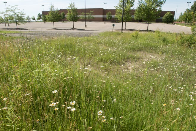 Vacant land north and west of the MJR Brighton Towne Square Digital Cinema 20, shown Thursday, June 27, 2019, is up for sale by the city of Brighton.