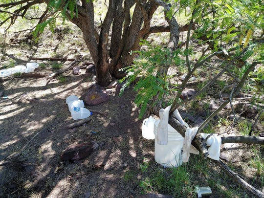 Socks left in a tree and water jugs in the Sonoram Desert at the U.S.-Mexico border.