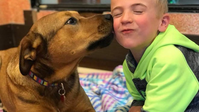 Seven-year-old Roman McConn is on a mission to save shelter dogs! He started Project Freedom Ride and has already helped thousands of dogs in need of good homes.