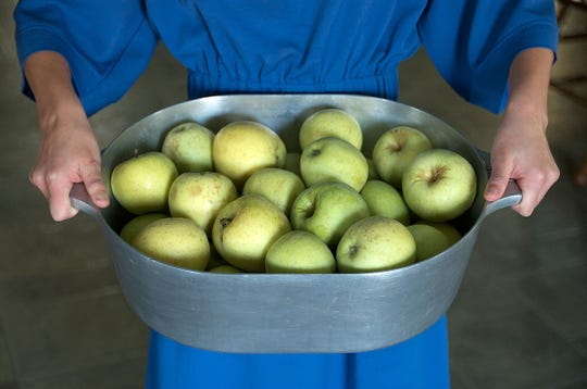 Apples destined to be cooked down into apple butter—the perfect sandwich spread for an afternoon snack.