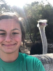 Bailey Stauffer and her ostrich friend in South Africa