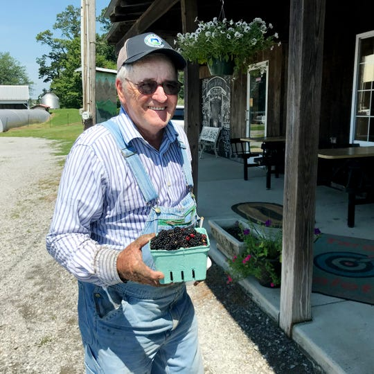 Ralph Cook, owner of Bottom View Farm, shows off a quart of fresh-picked blackberries.