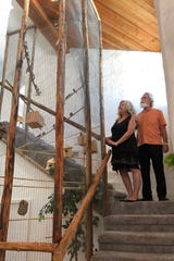 Installing the aviary was part of the plan when Suzanne and Michael Woodford were designing their Mesa home.