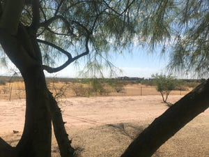 Surprise has long sought to create a downtown on vacant land near Litchfield Road and Bullard Avenue.