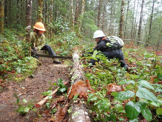 Two members of the Salem-based Salamander crew work to remove a fallen tree from a hiking trail in the Cascade Mountains.
