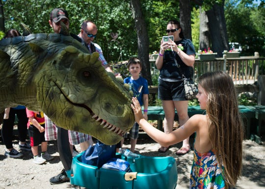 Kiddies can get up close and personal with animatronic dinosaurs at the Oakland County Fair.