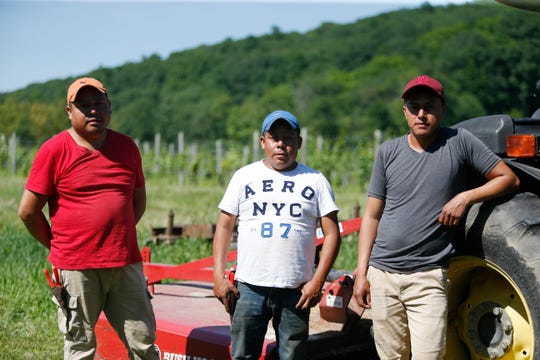 From left, Hector, Santos and Eddie Socorec pose for a photo on a tractor at Millbrook Vineyards on June 28, 2019. The Socorec brothers have been working at the vineyard on H-2A visas, supporting families back home in Guatemala.
