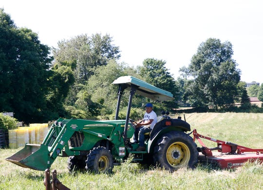 Santos Socorec drives a John Deere tractor at Millbrook Vineyards on June 28, 2019. Santos, 38, has been working at the vineyard for ten years, and uses the income he earns from the 8 months on the vineyard to help support his wife and five children, as well as his parents all living in Guatemala.