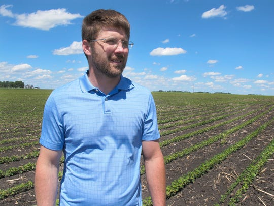 """In this Tuesday, June 25, 2019, photo, farmer Matthew Keller walks in his soybean field near Kenyon, Minn. When the Trump administration announced a $12 billion aid package for farmers struggling under the financial strain of his trade dispute with China, the payments were capped. But records obtained by The Associated Press under the Freedom of Information Act show that many large farming operations easily found legal ways around the limits to collect big checks. Recipients who spoke to AP defended the payouts, saying they didn't even cover their losses under the trade war and that they were legally entitled to them. Keller, a pork producer in Kenyon, who also grows crops to feed his livestock, said he """"definitely appreciated"""" the $143,820 he collected from the program. It didn't cover all his losses but it helped with his cash flow, he said. He reached the $125,000 cap on his hogs, and the remaining money was for his soybeans and corn."""
