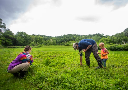 From left: Emily Appelman, Christopher Appelman, and Sparrow Appelman, 3, all of Durango, Iowa, harvest asparagus at their farm on Wednesday, June 12, 2019.
