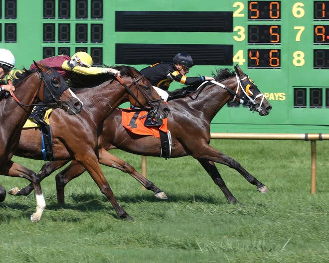 Julien Leparoux, who rode at Ellis Park for the first time ever Sunday, won the eighth race on Justice Racing Stables' Apreciado
