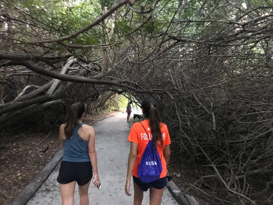 Last week's stop in the Summer Brewery & Running Tour was at Florida Beer Company in Cape Canaveral. it featured a three-mile route that took participants under the mangroves to the beach.