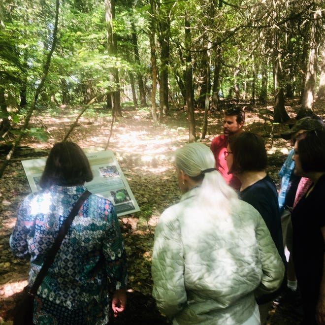 Hikers viewed the new interpretive sign along an Ellison Bluff park trail Saturday.