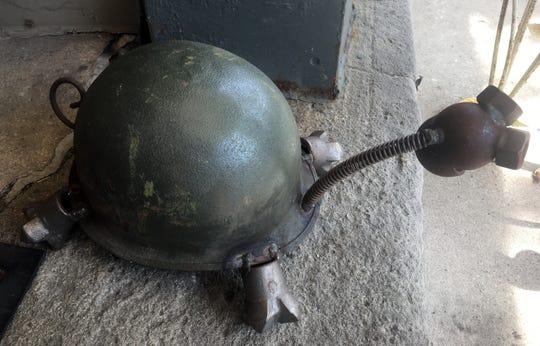 Helmet turtle.