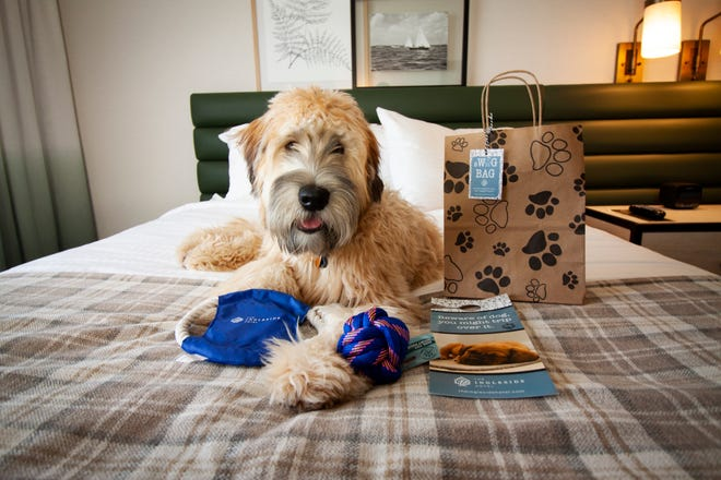Ingleside in Pewaukee is now a pet friendly hotel.