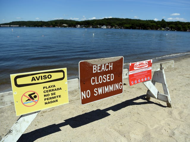 Harmful algae blooms keep water sports on hold at NJ, NY, PA