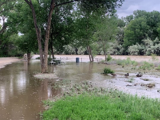 The birds don't mind, but no picnics will likely be held for a while at this rest spot on the north side of Berg Park as warm weather and spring runoff continue to feed a rising Animas River.