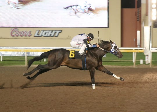 Jesses Dashair and Uncle D winning their Heritage Place Futurity trials.