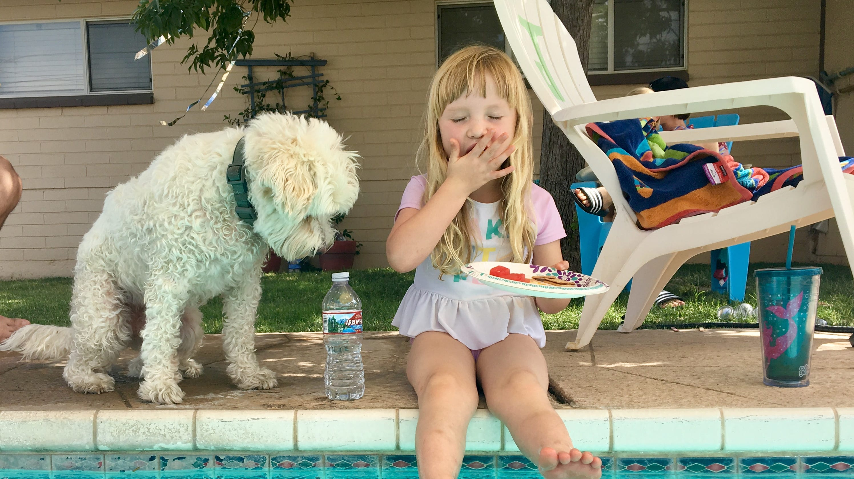 As July 4 skies light up, throw a puppy paw-ty to distract dogs from fireworks