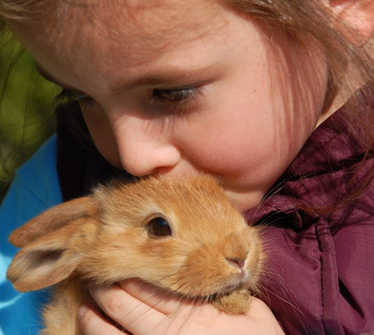 Researchers in Israel found drug-resistant bacteria strains on petting zoo animals.