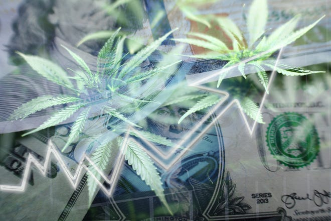 ICC is positioning themselves to give investors something different in the cannabis industry.
