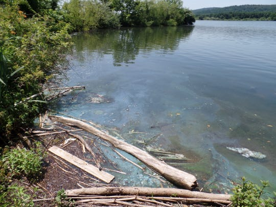 The state Department of Environmental Protection shut down public swimming areas at Spruce Run and Lake Hopatcong due to a bloom of toxic blue-green algae — also known as cyanobacteria — and warned against any contact with the water.