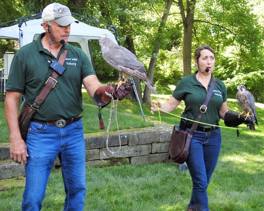 Doug and Becky Geiger of Miami Valley Falconry showcased owls, falcons and hawks in two shows last week at Clary Gardens. One was for the general public and the other was part of Universe of Plants youth programming for the summer.