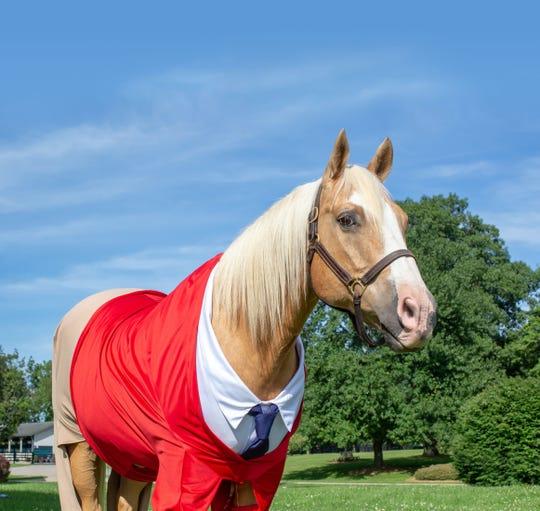 Hank the horse.