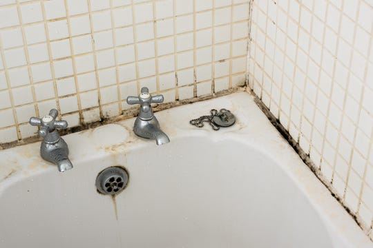 Check hidden areas, such as under sinks, around exhaust fans, even in crawl spaces and basements underneath bathrooms.