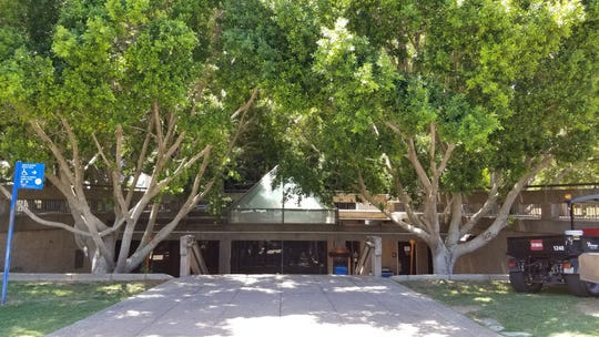 Crews will prune two ficus trees near the steps connecting Fifth Street to the garden level of the Tempe Municipal Complex to allow for construction equipment to access the garden level and upper deck during the Tempe City Council chambers renovations, pictured in July 2019.