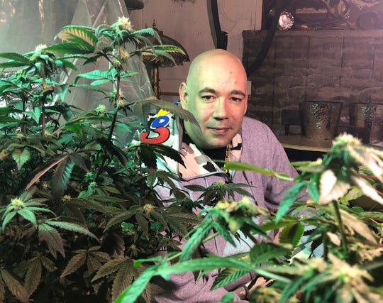 In this April 8, 2019 photo, a Bennington, Vermont resident tends to two marijuana plants he legally grows in a basement. Home grow laws vary from state to state. Vermont allows adults to grow up to two mature plants. Missouri allows qualifying patients and caregivers to grow up to six mature plants.