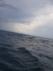 A 27-foot Proline sits upside down about 10 miles off St. George Island where it capsized with three people on board. The men were rescued by a group of fishermen who heard their mayday calls.