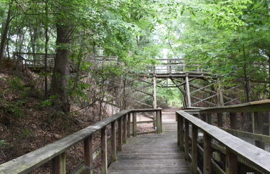 Two trails traverse Forts Randolph & Buhlow State Historic Site. One ground trail and a boardwalk that is about a 35-minute walk. The boardwalk has upper and lower levels built in a wooded area. Visitors can read about area history on markers located along the way.