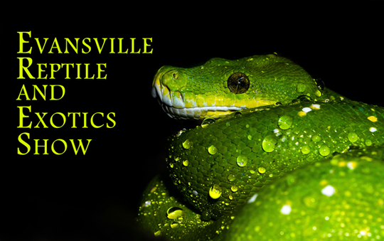 Evansville Reptile and Exotics Show
