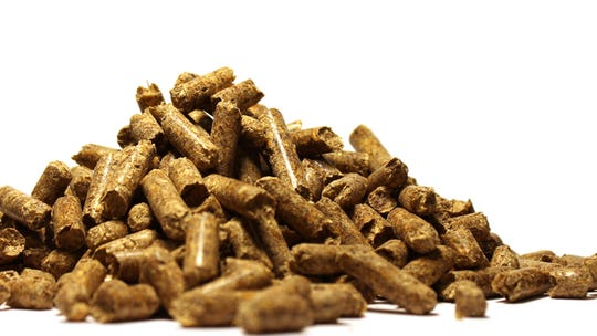 Enviva's wood pellets are produced at facilities around the Southeast, then shipped overseas to be burned for energy at biomass plants in Europe and Asia.