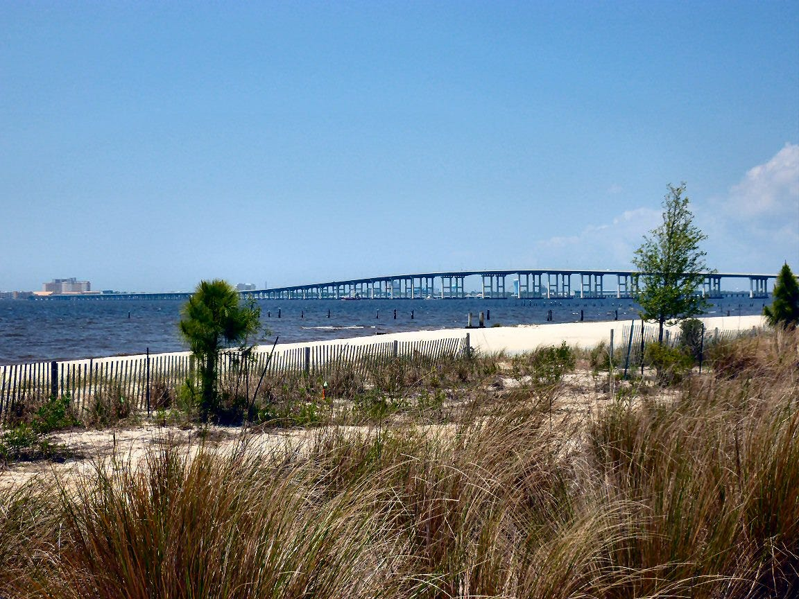 All Biloxi Beaches Closed For July 4th As Algae Spreads