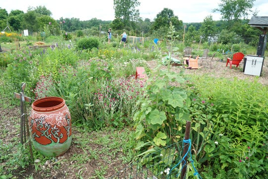 Milford's Growing Greens community garden.