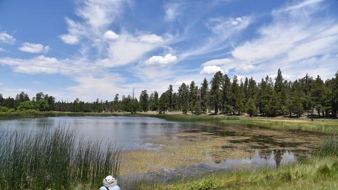 perkins tank and jd dam lake fishing hiking near williams arizona perkins tank and jd dam lake fishing