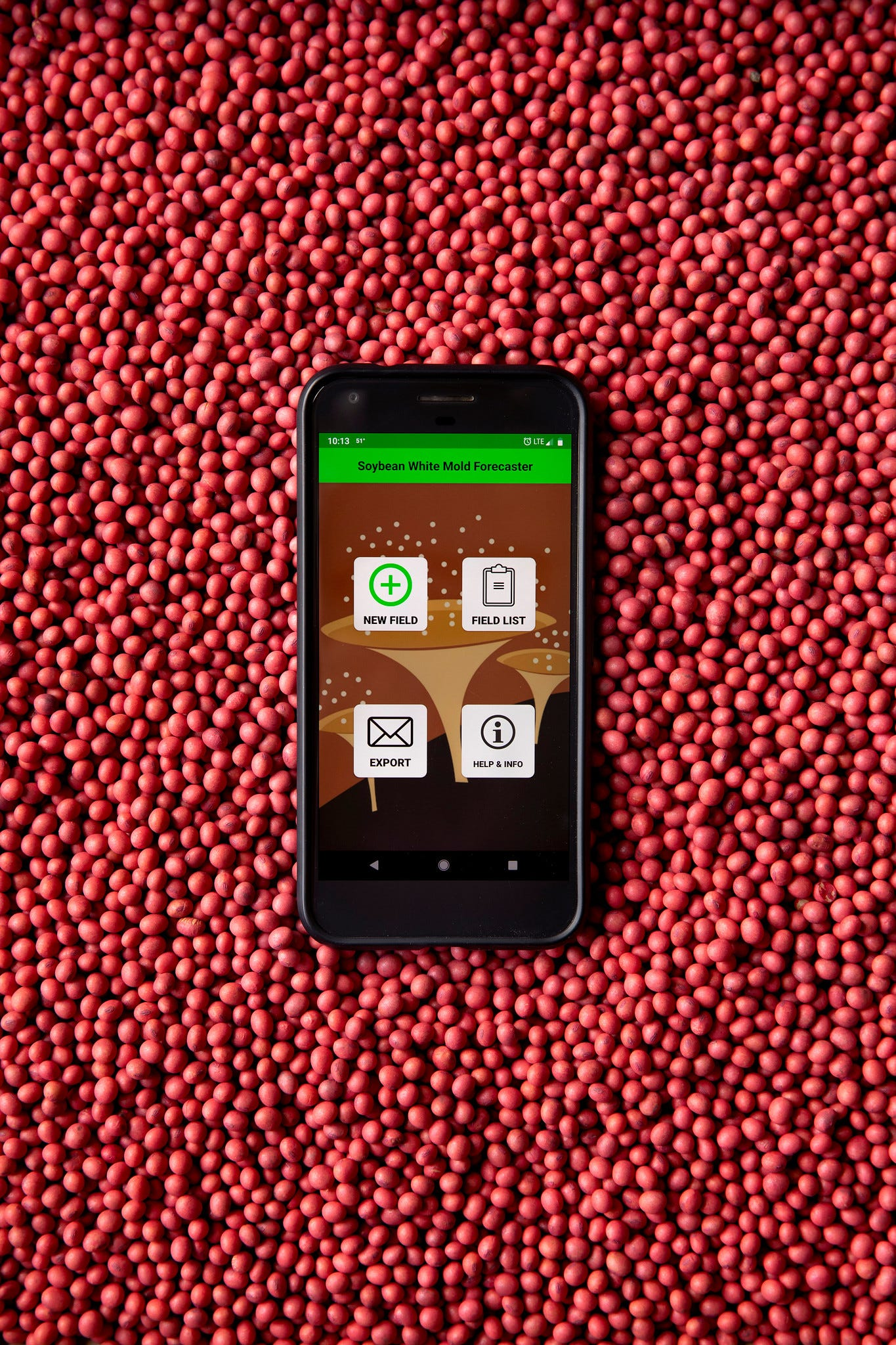 Mobile apps allow farmers to tap into CALS expertise from