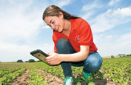 Marian Lund, a graduate student in the Plant Breeding and Plant Genetics program at CALS, tests out the Soybean Replant Calculator app. The app uses photos taken in soybean fields to calculate plant stand (i.e., population) at early growth stages and then estimates the expected yield with and without spring replanting.