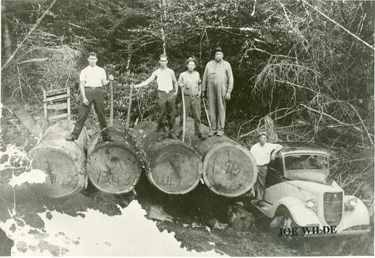 Photo, taken 1928, courtesy of Rowell Bosse N.C. Room, Transylvania County Library.