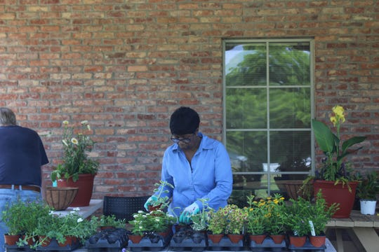 Two July workshops in Pike Road will teach gardeners about using their plots all year, and the best ways to attract the useful insects - pollinators.