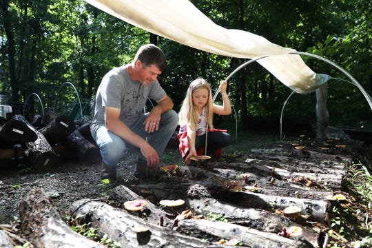 Rick Felumlee and his daughter Emma look at reishi mushroom at Mayapple Farms. The Felumlees grow a variety of mushrooms and uncommon plants at their woodland farm near Dresden.