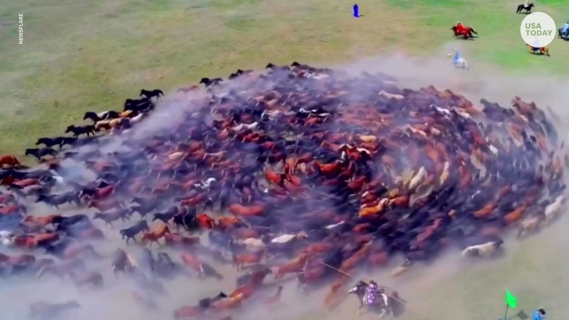 Spectacular drone footage captures hundreds of horses galloping in circles